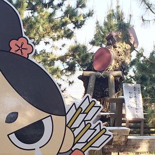 【世界遺産】三保の松原に行ってきました
