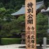 臨済寺の特別公開に行ってきました