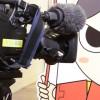 テレビ静岡で「今川さん」が紹介されました